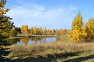 Sherwood Park Edmonton